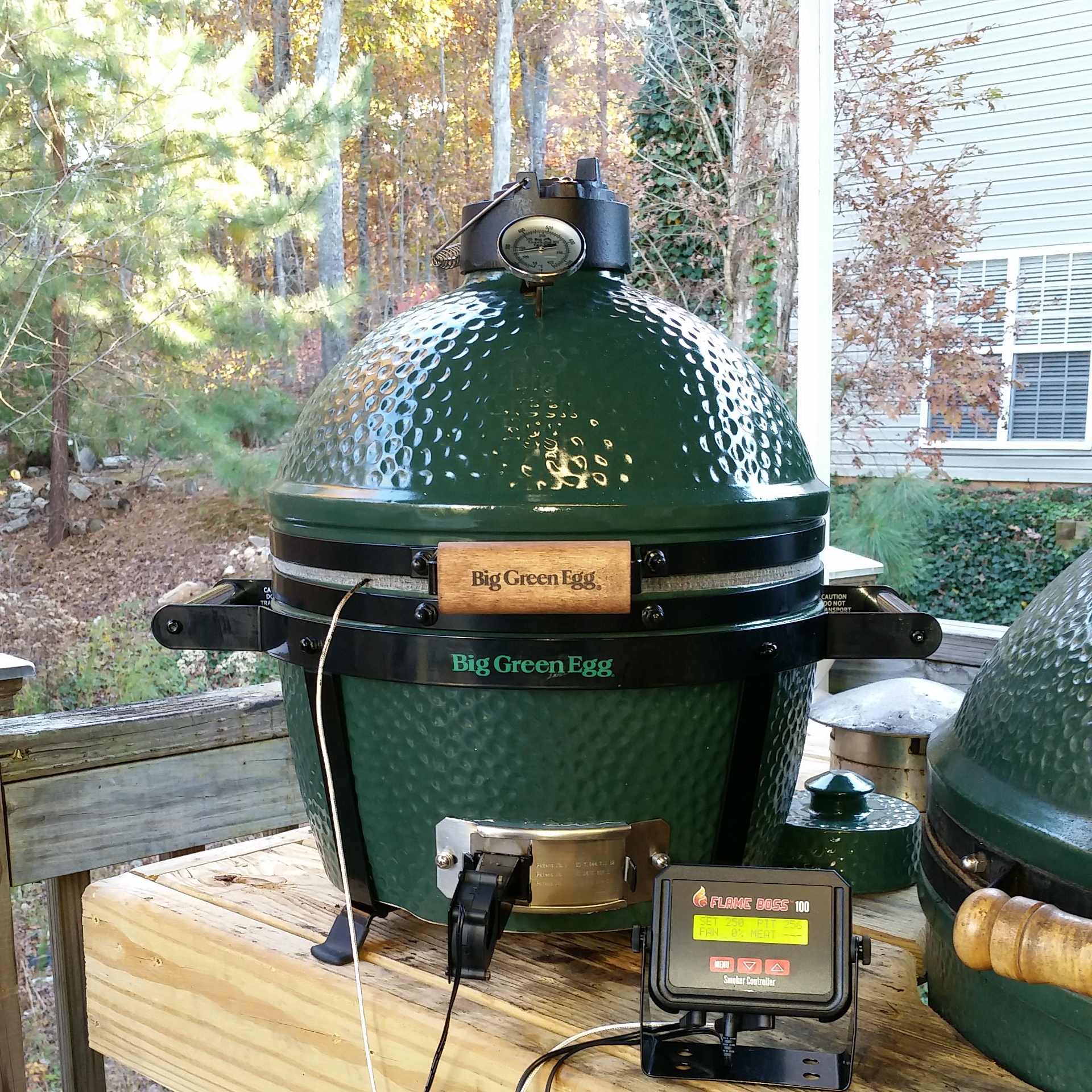 does the mini max low slow big green egg egghead. Black Bedroom Furniture Sets. Home Design Ideas