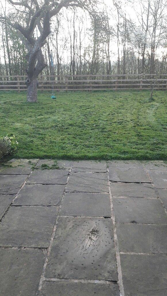 Grass Cutting Villa Rica Ga