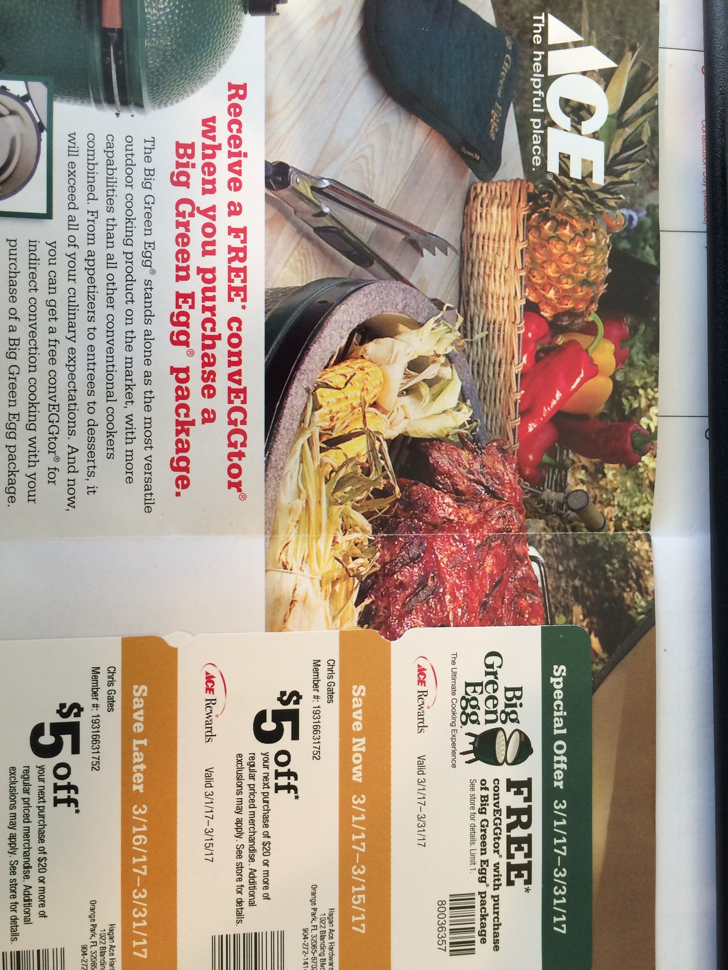 Big green egg discount coupons