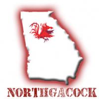 northGAcock
