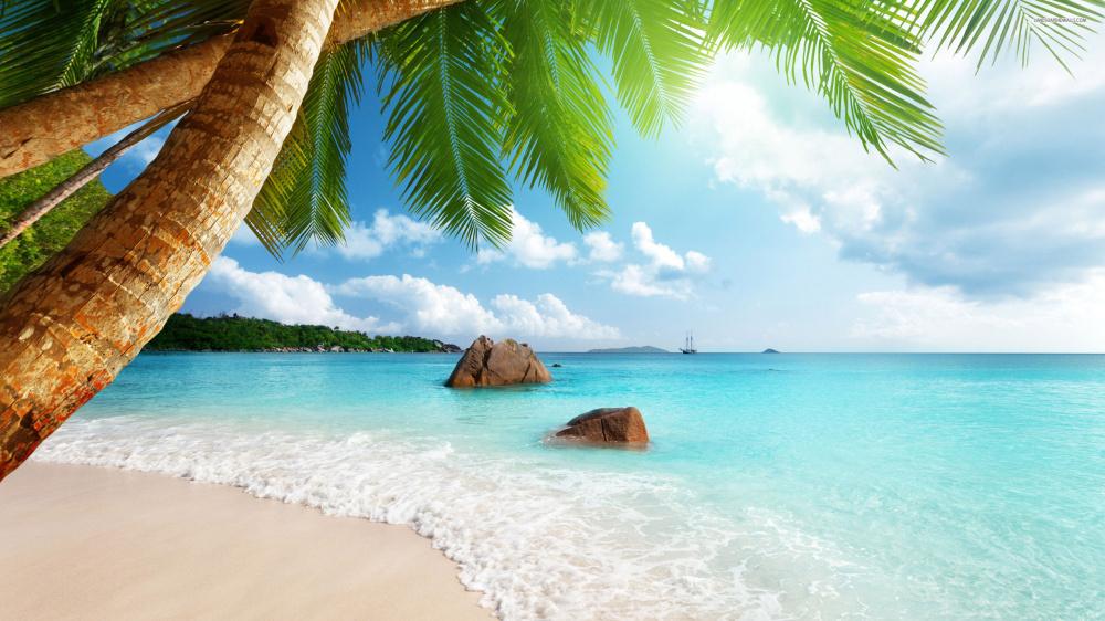 402501076-beach-wallpapers.jpg