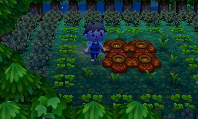 How To Change Playtime Animal Crossing New Leaf Save Editor