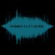 VannDigitalNetworks