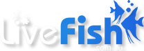 Livefish.com.au Forums