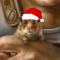 Contemplative_Hamster