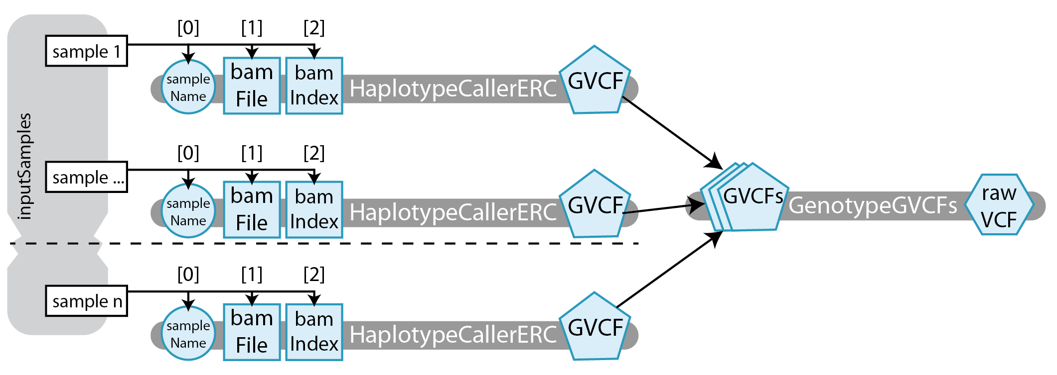 Wdl doc 7614 4 howto use scatter gather to joint call genotypes as you can see from this diagram there are a lot of pieces in this workflow in previous tutorials the workflows were simple enough that the diagrams may ccuart Gallery
