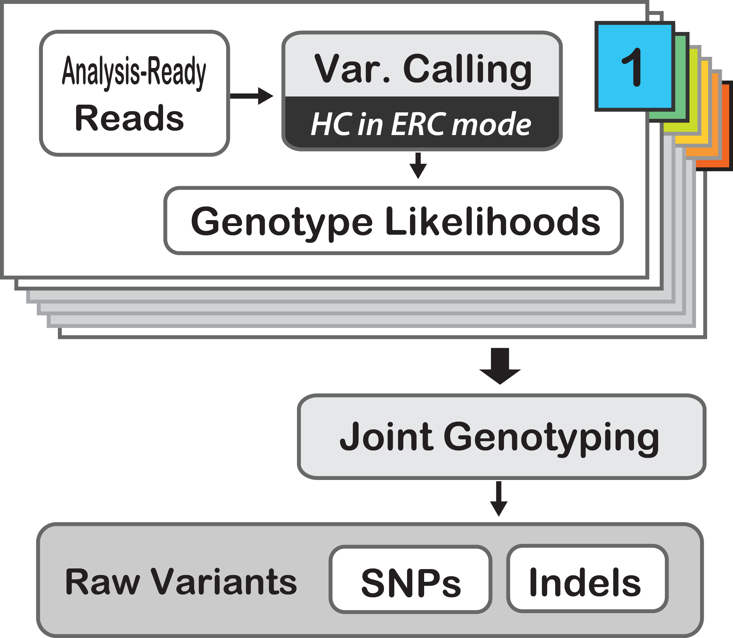 Our Main Purpose Is To Demonstrate An Effective Workflow For Calling  Germline Snps And Indels In Cohorts Of Multiple Samples This Workflow Can  Be Applied