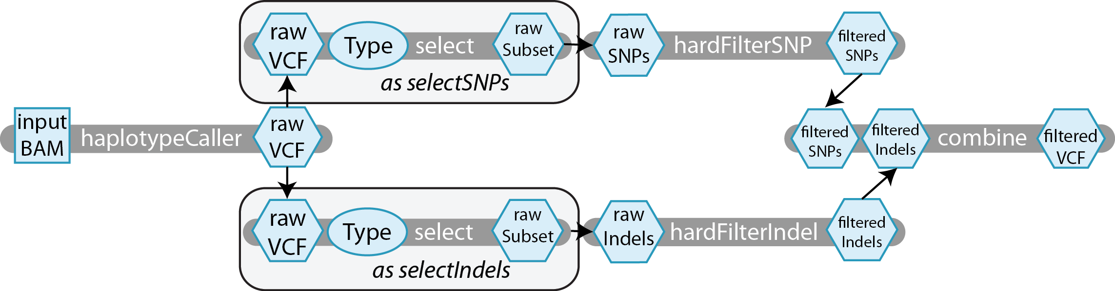 With Linear Chaining, We Will Feed The Separate Indel And Snp Vcfs Into A  Filtering Step Using Separate Tasks, We Will Show A Sample Hard Filter,