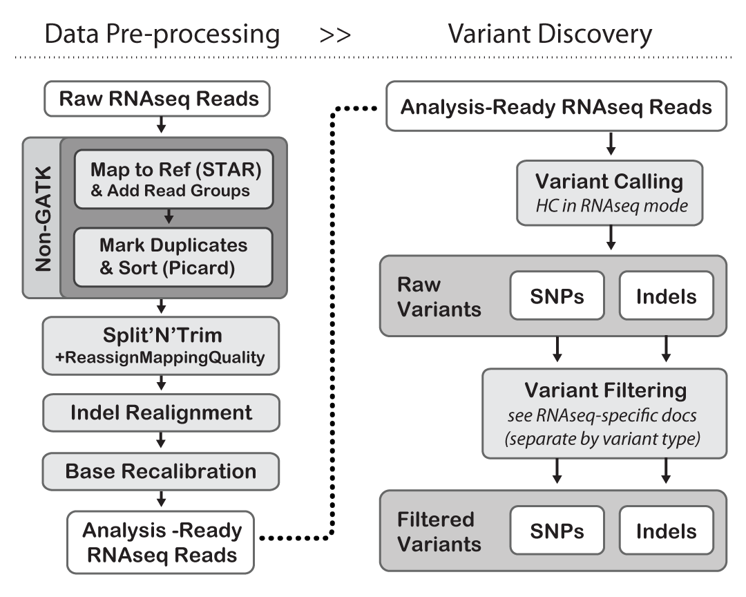 The GATK Best Practices for variant calling on RNAseq, in