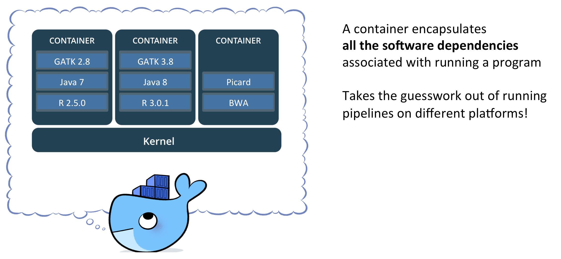 FIRECLOUD | Doc #11252 | Docker - container - image - registry