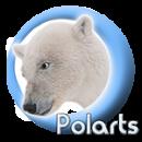 Polarts