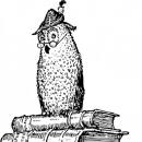 owlstack