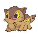 catbusstop