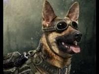 Survivor Hero Max War Commander
