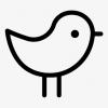 BirdIsThePassword