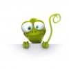NosyGecko
