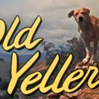 YellowSnow