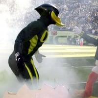 DucksFC