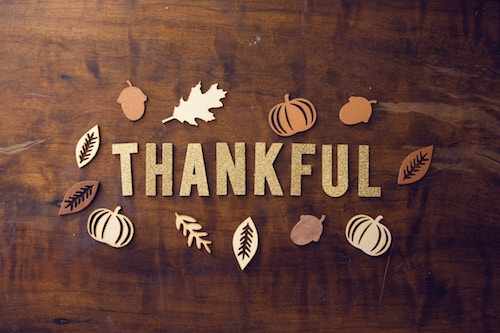 Happy Thanksgiving to our College Confidential community!