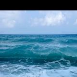 oceanlover321
