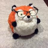 FoxyMoxie