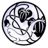 warblersrule