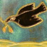 crowlady