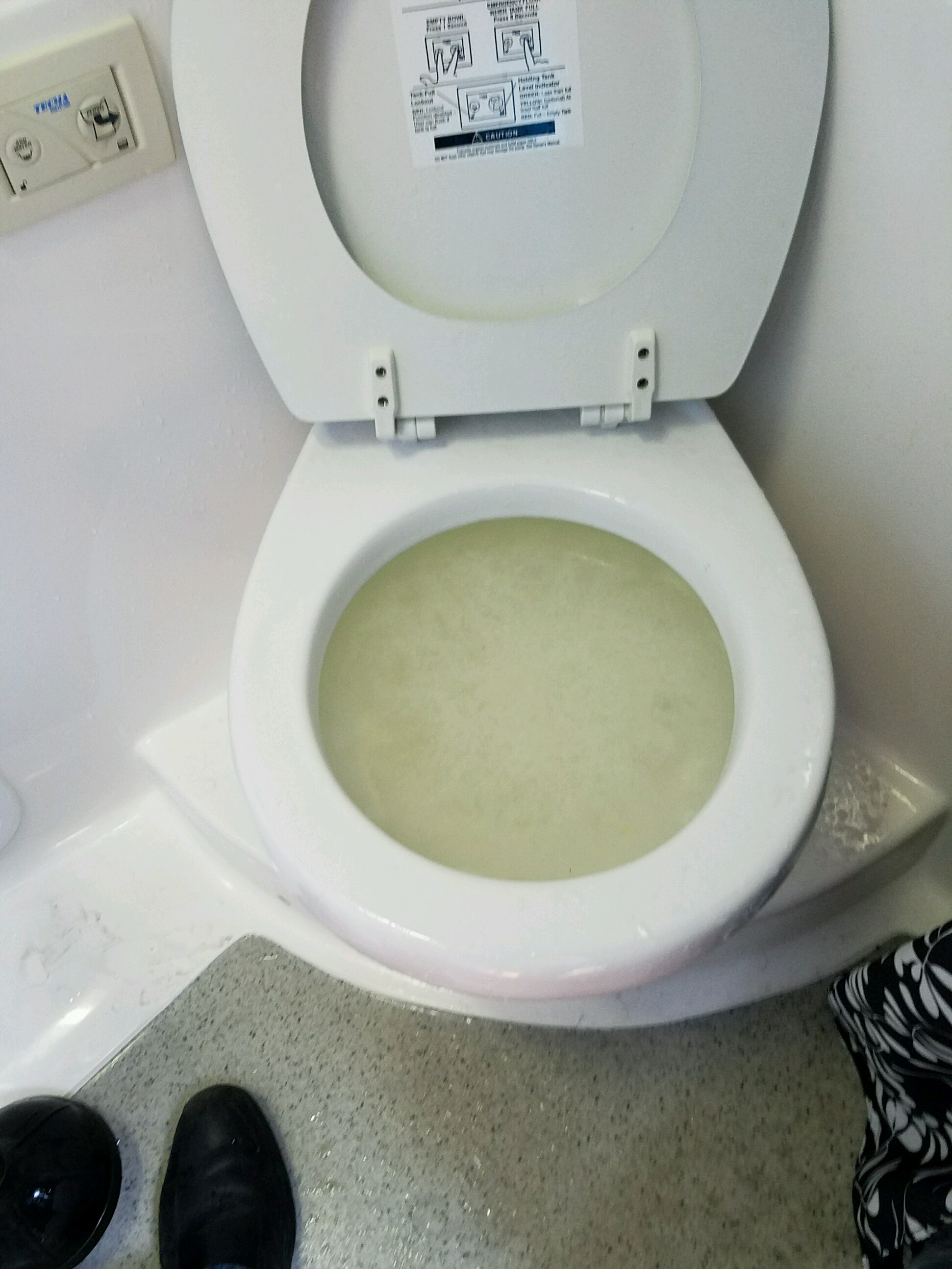 Clogged up tecma ez flush toilet on a 310 ec — Rinker Boats
