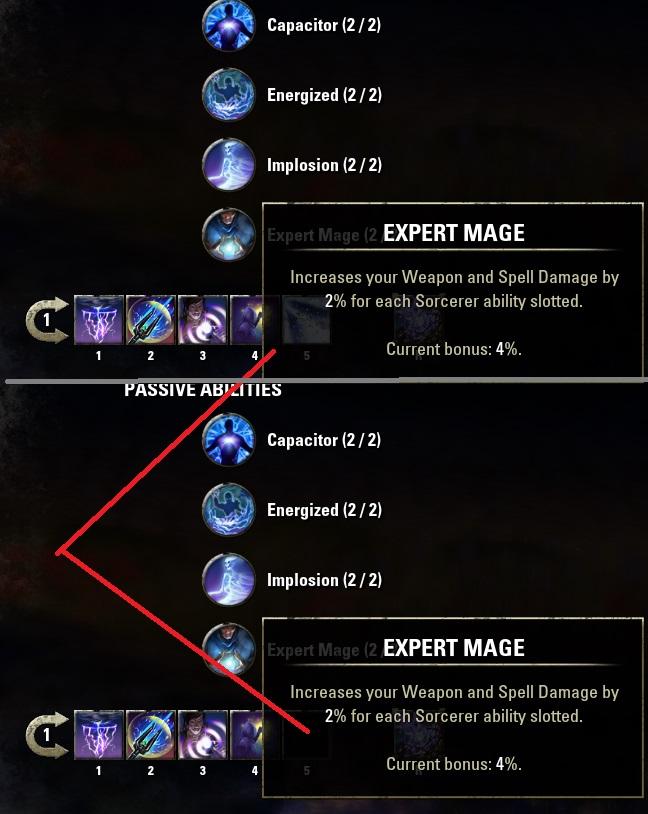 Sorcerer Expert Mage Bug Elder Scrolls Online