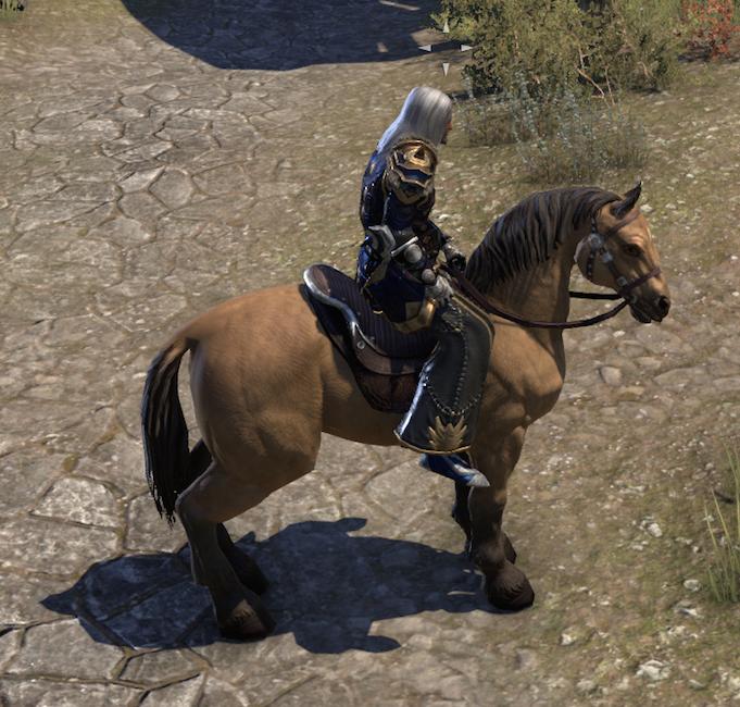 Please fix the horses — Elder Scrolls Online