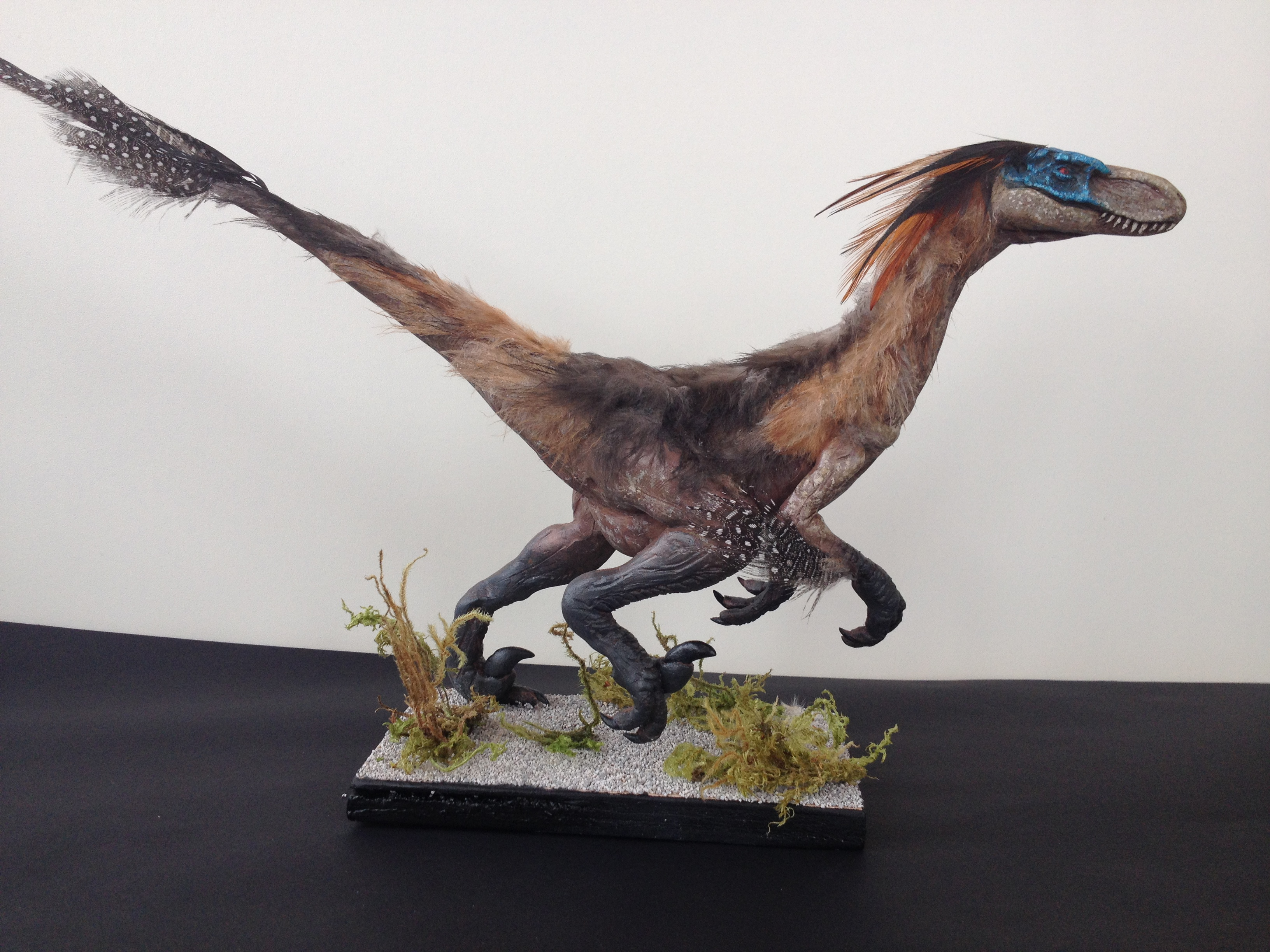 Velociraptor Mongoliensis sculpture (with real feathers ...