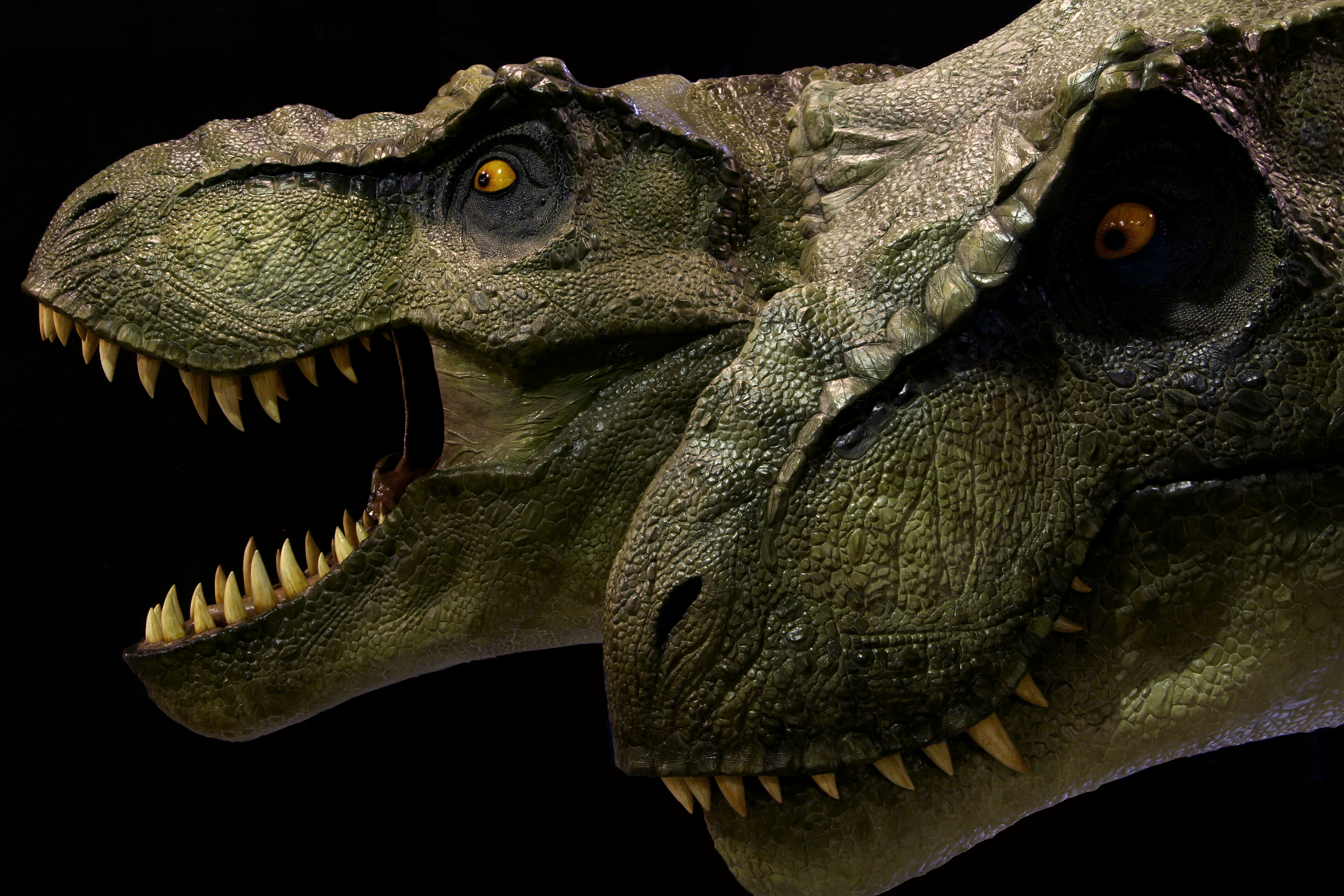 T-Rex Heads (1:1 scale) — Stan Winston School of Character Arts Forums