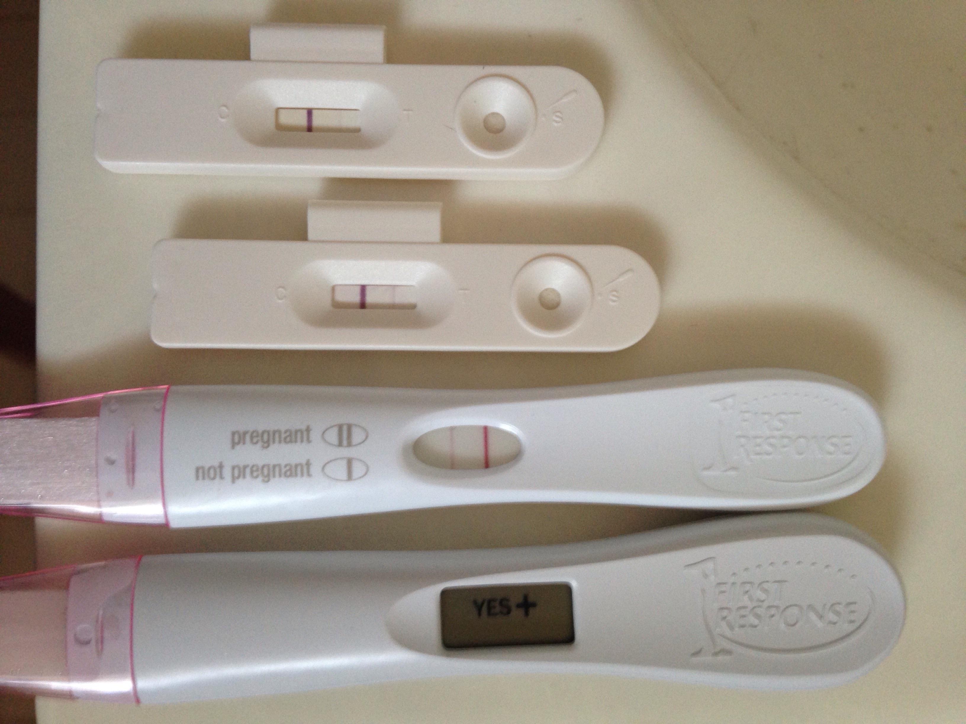 clear blue digital pregnancy test instructions