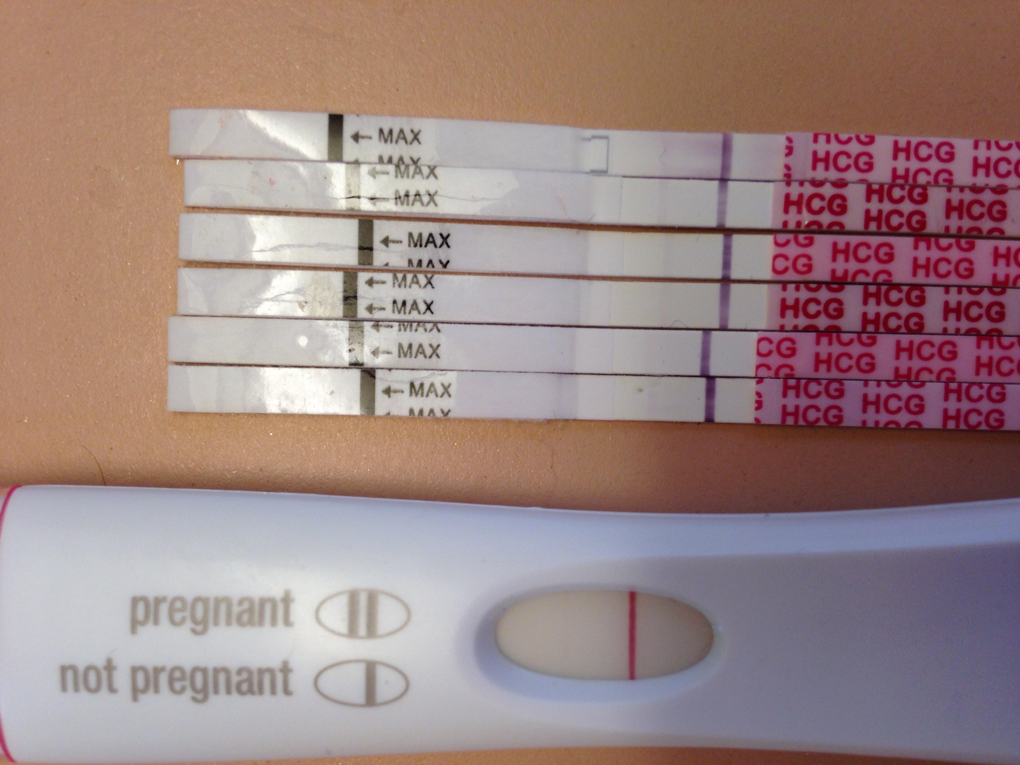 Progression Pregnancy Test Question The Bump