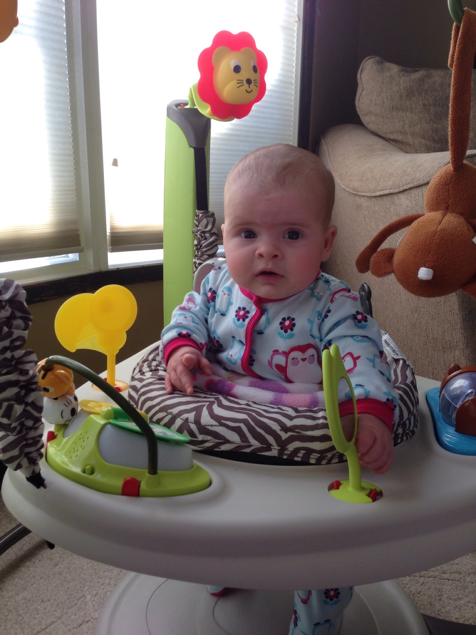 Best Exersaucer Jumperoos Go The Bump