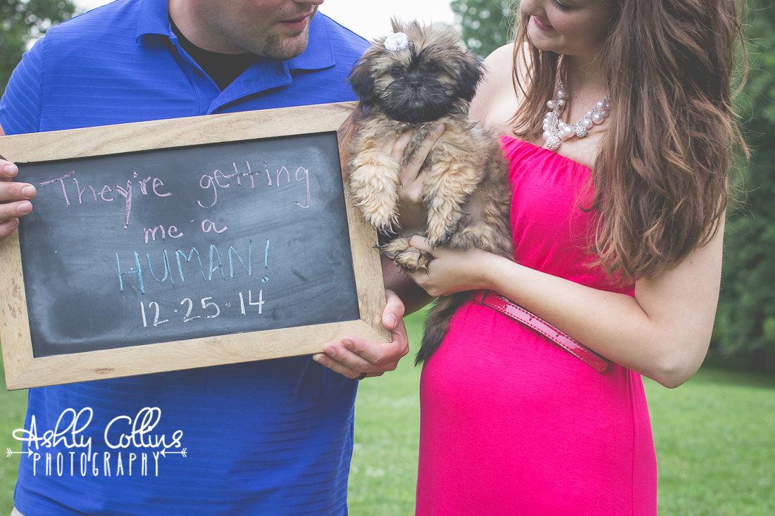 Puppy Facebook Announcement The Bump