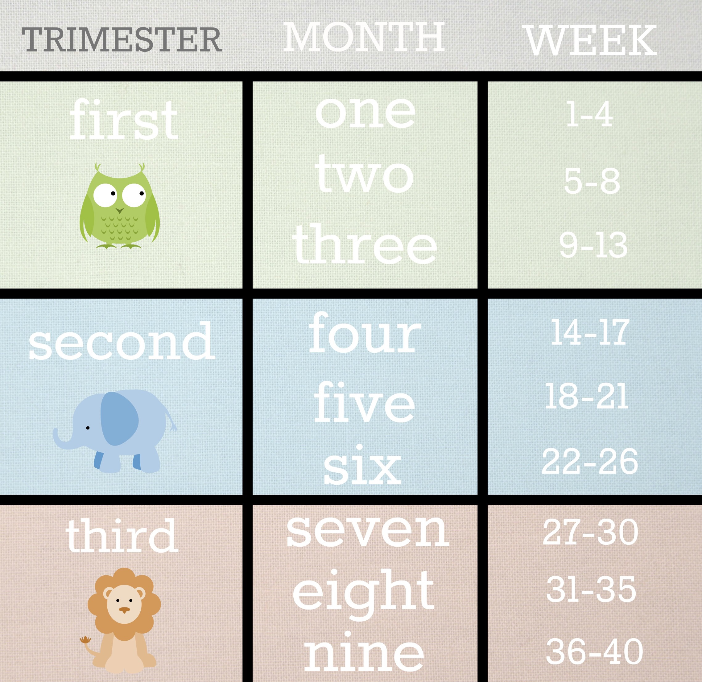 Weeks to months pregnancy chart pregnancy chart dancing baby hd image of how many months am i if i m 24 weeks tomorrow the bump nvjuhfo Image collections