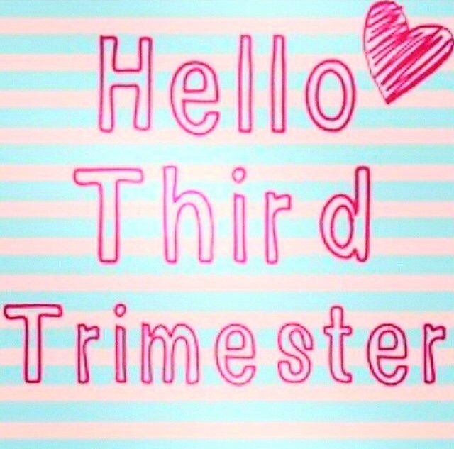 Image result for trimester 3