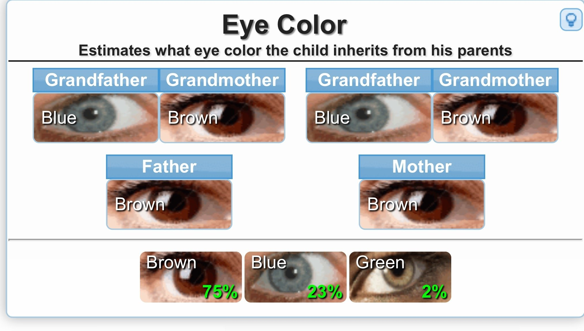Genetics calculator for eye color etc the bump managed to make it work geenschuldenfo Images