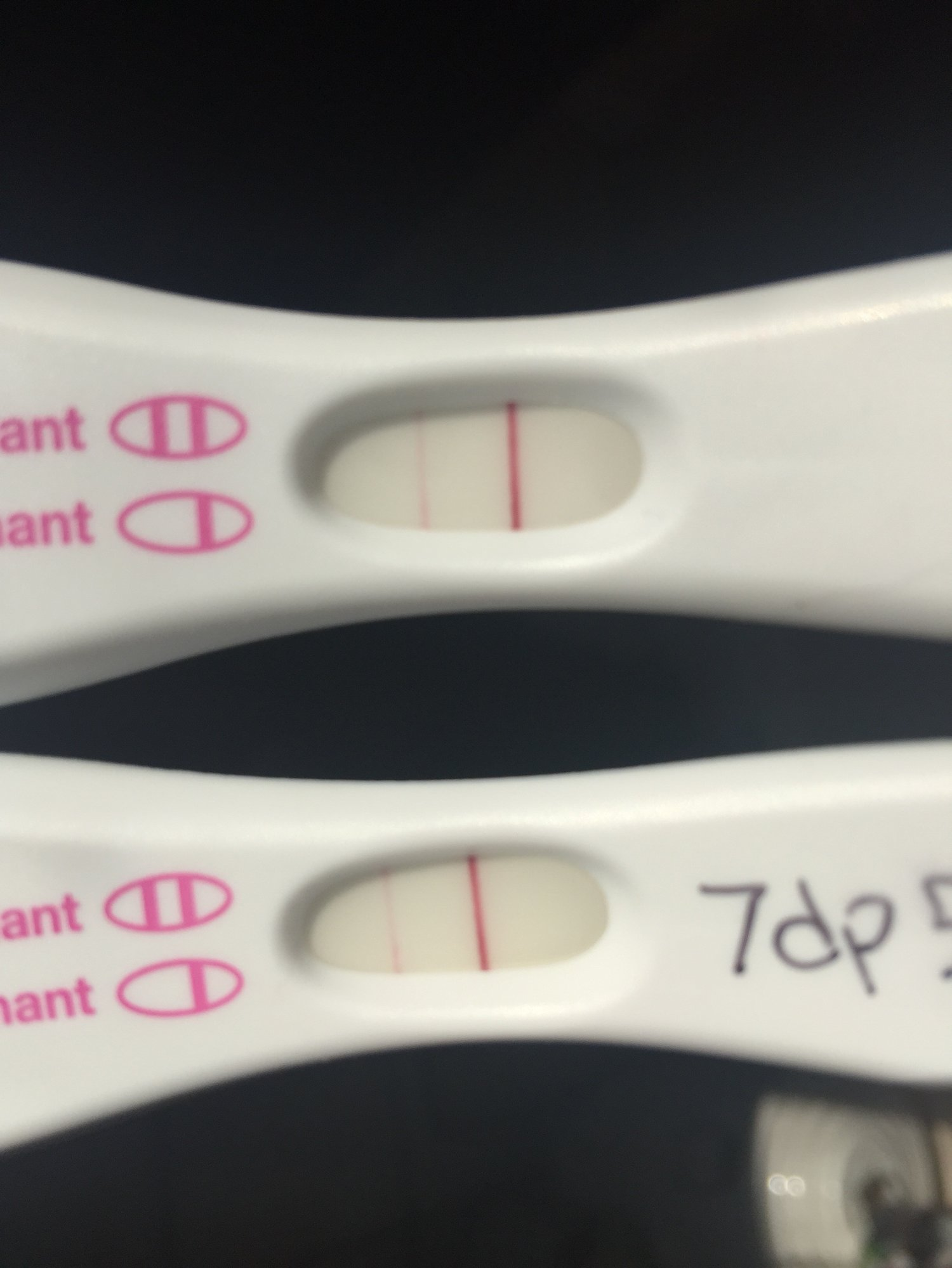 13 Dpo Brown Spotting Bfn