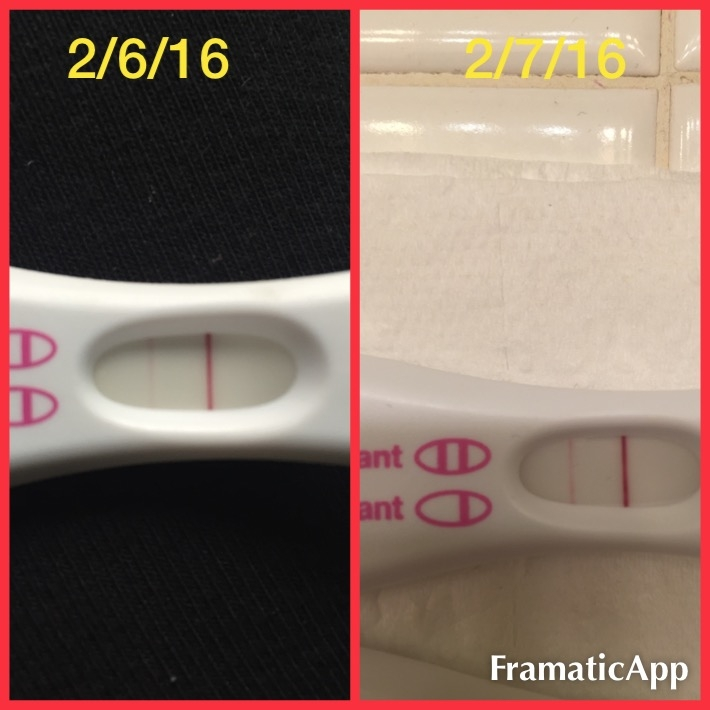 What does a positive pregnancy test really look like?? - Page 19
