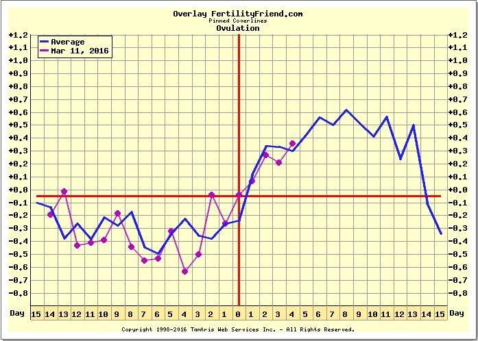TWW Tuesday — The Bump