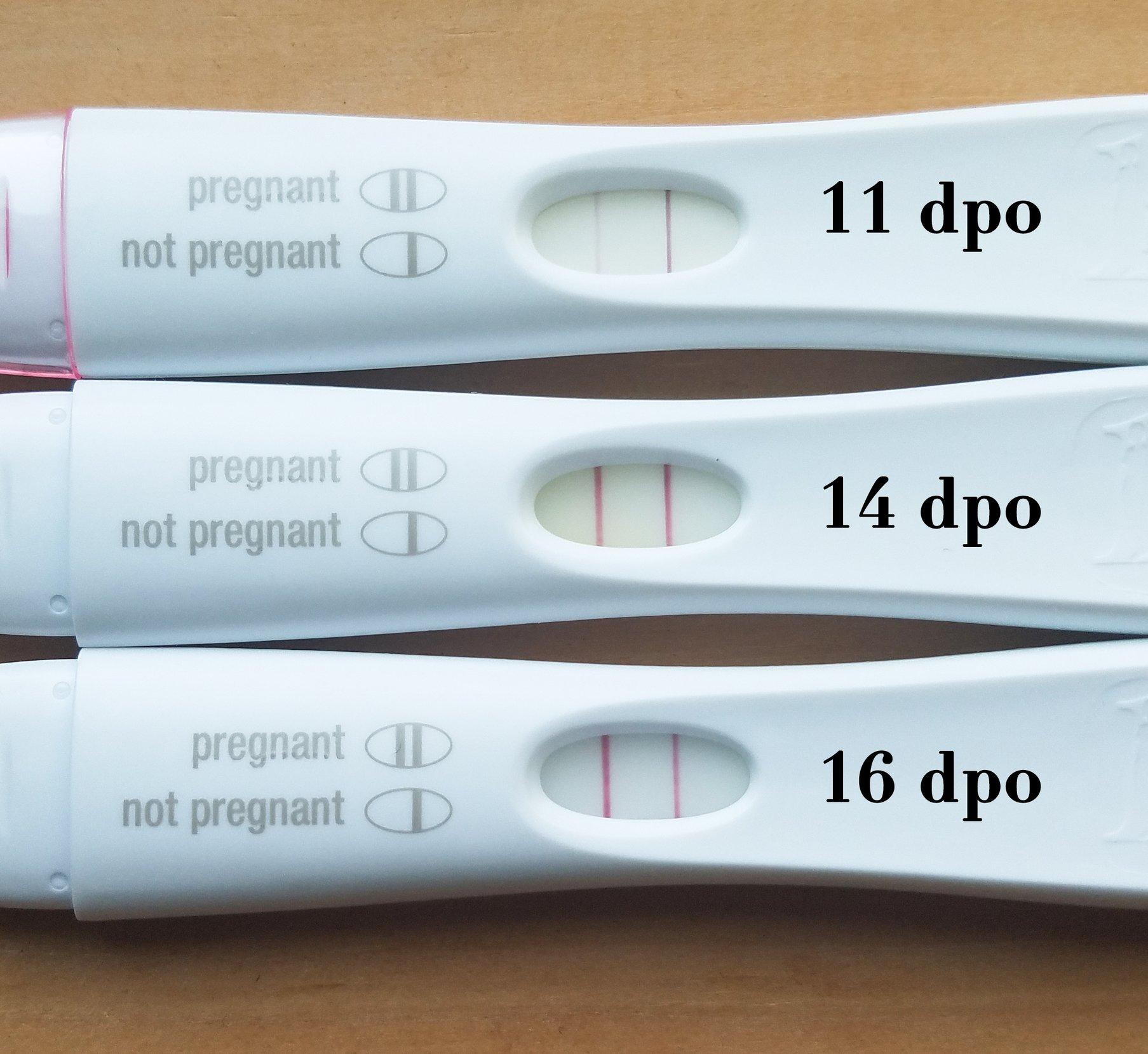 Pregnancy Test By Dpo - Pregnancy Symptoms