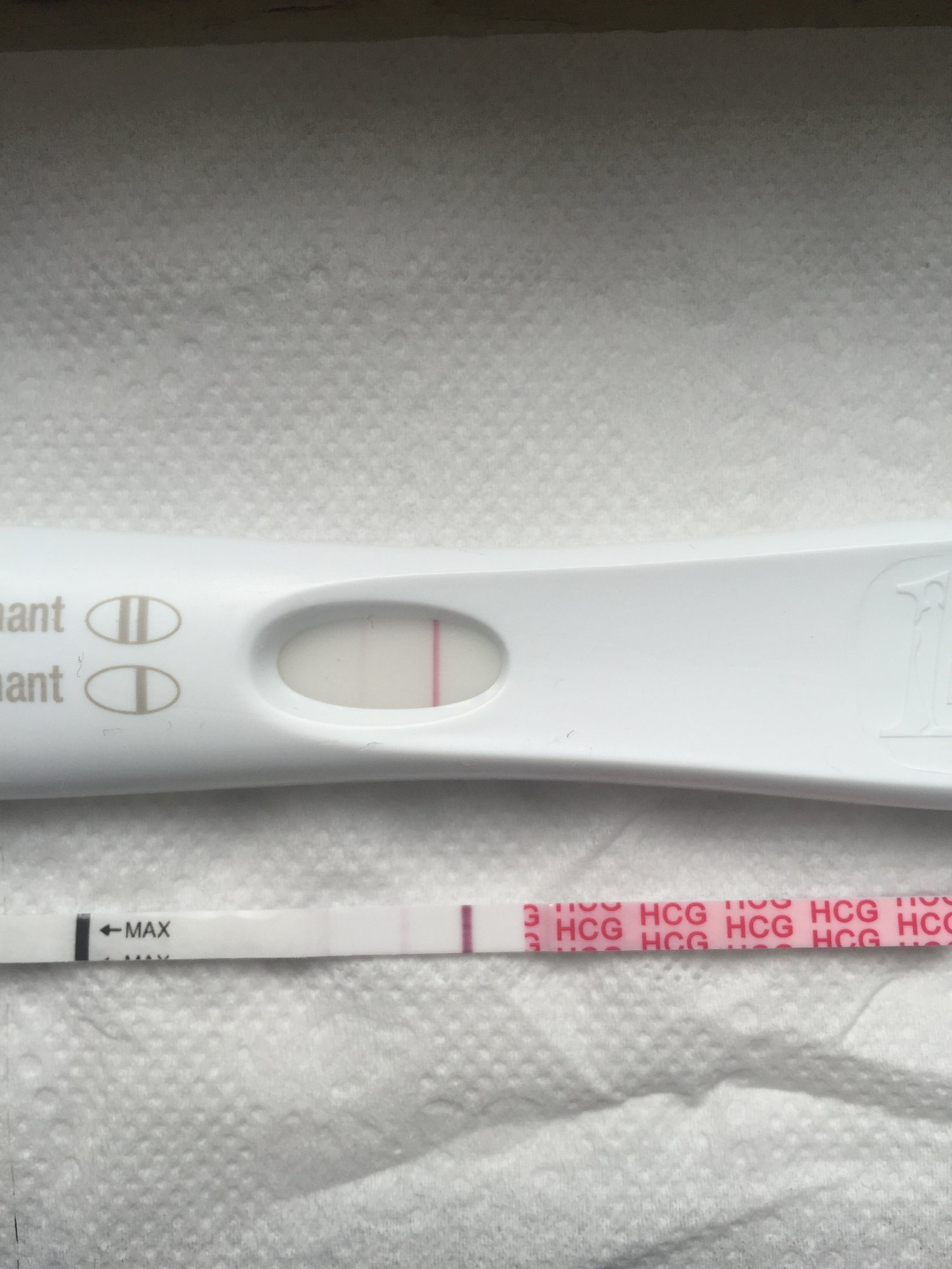 What Does A Positive Pregnancy Test Really Look Like Page 21