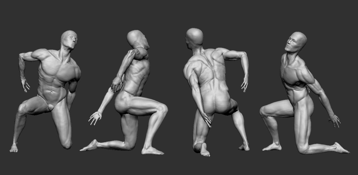 WIP] human anatomy - ZBrush — polycount