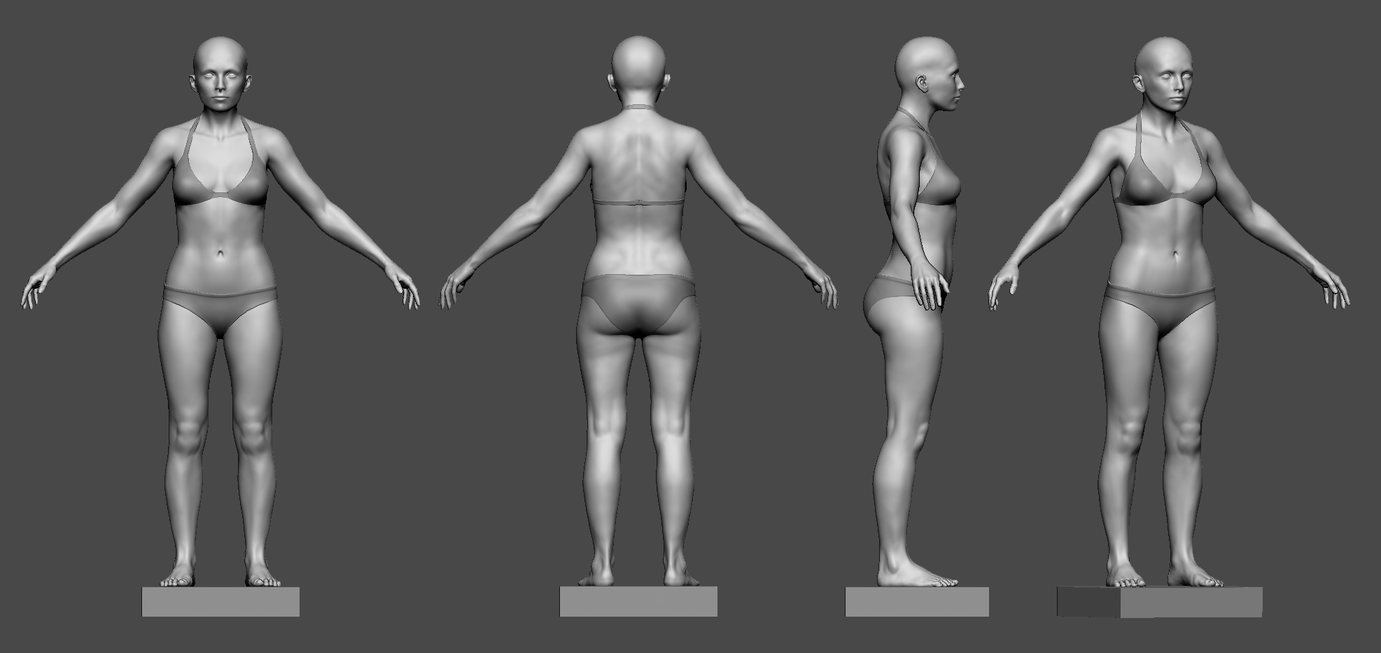 Female Anatomy Study — polycount