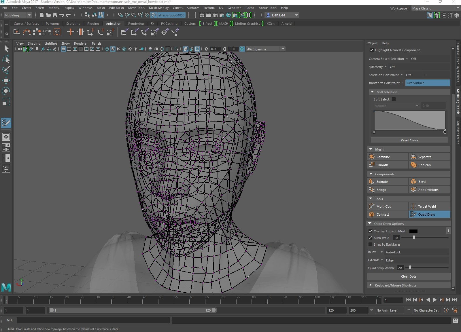 Maya: Quad draw visibility  Need assistance  — polycount
