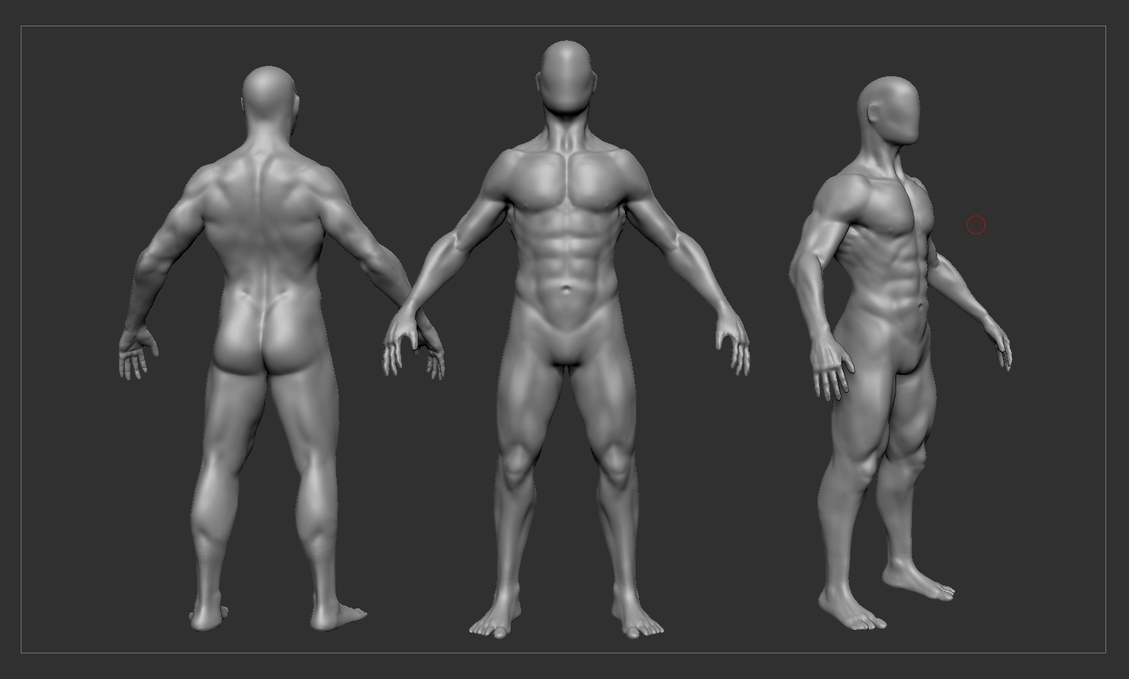 Male Anatomy Practice Looking For Feedback Polycount