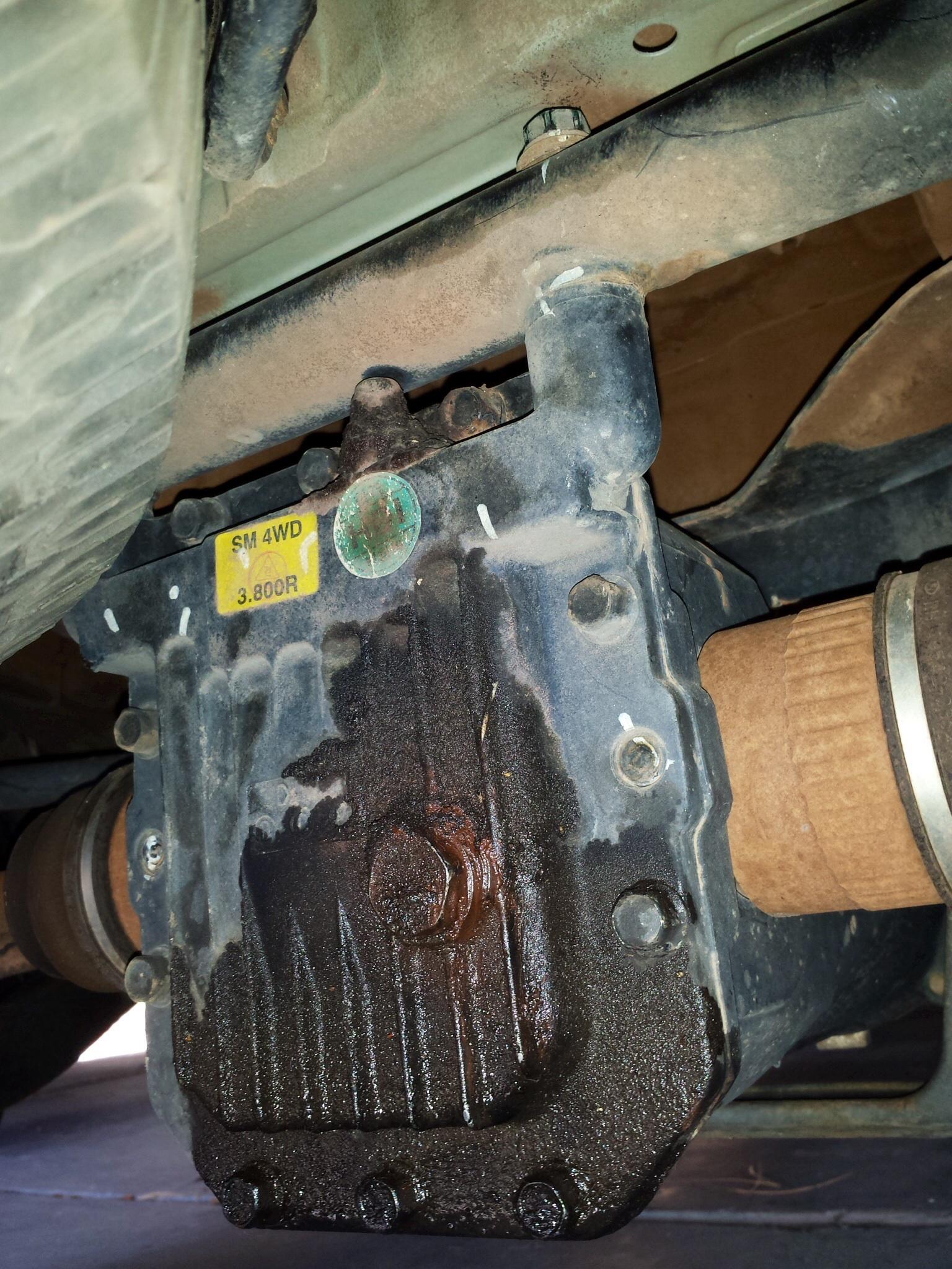 Hyundai Santa Fe Rear differential cover plate  Car Forums at