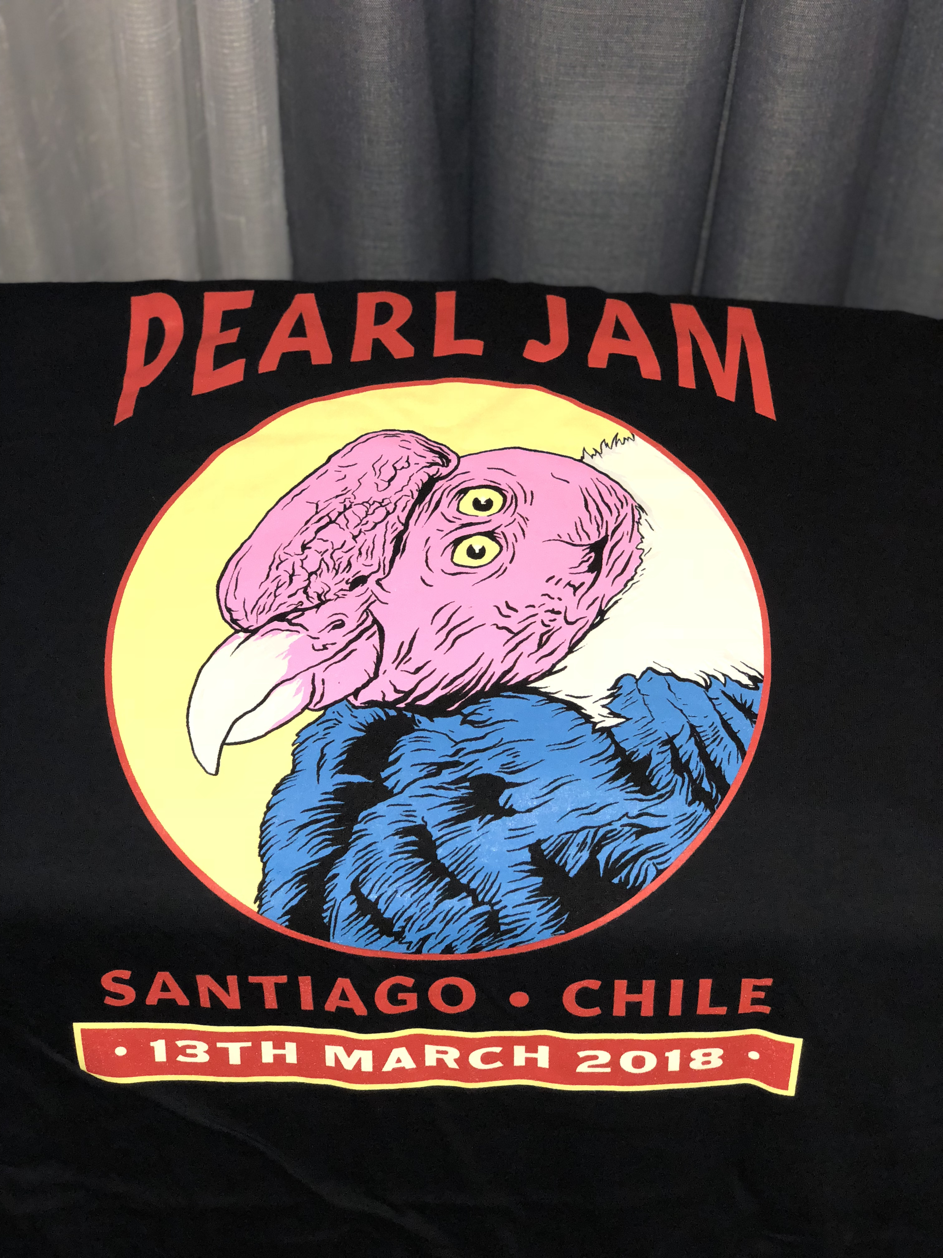 Image result for pearl jam 2018 south america tour shirt